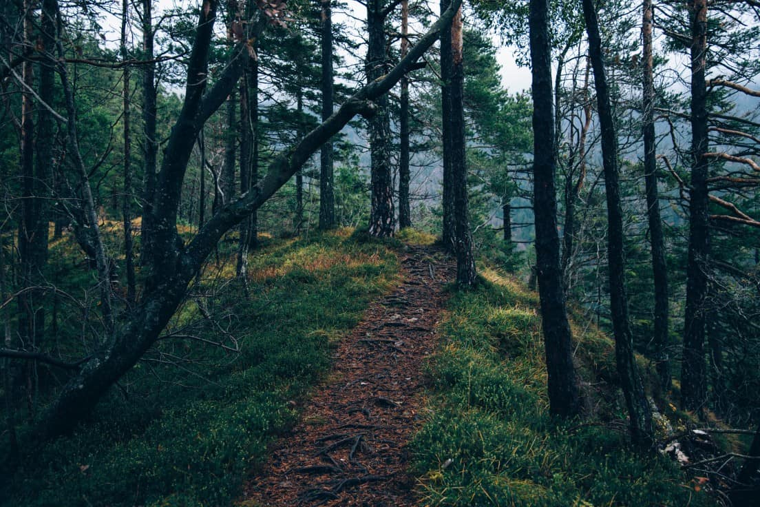 5 Signs of Being on the Right Path in Life
